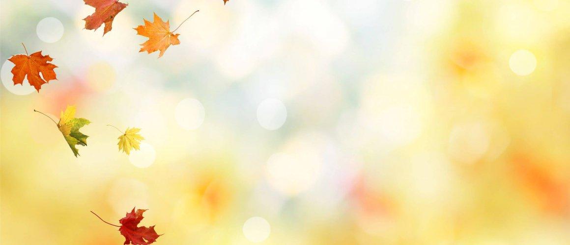 Pogoda na laser. Dlaczego warto zacząć depilację laserową jesienią?